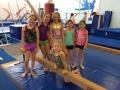girls in gymnasium