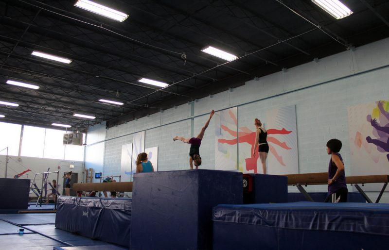 Gymnastics and Dance Classes
